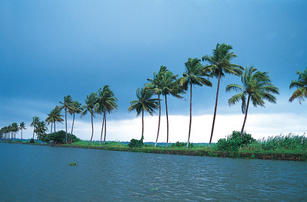 Backwater In Kerala