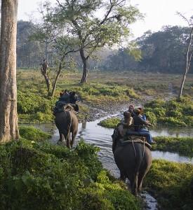 Buxa National Park