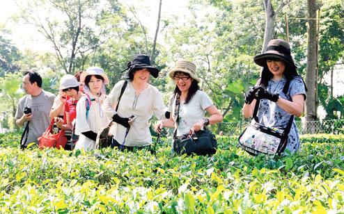 Tinsukia Tourism