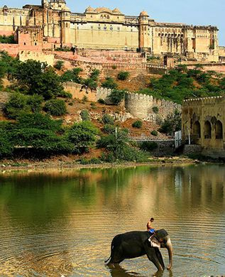 Color of Rajasthan Tour