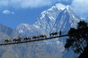 Darjeeling Hill