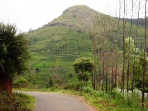 Nilgiri Hill in Gaur